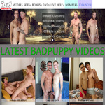 Bad Puppy Hd