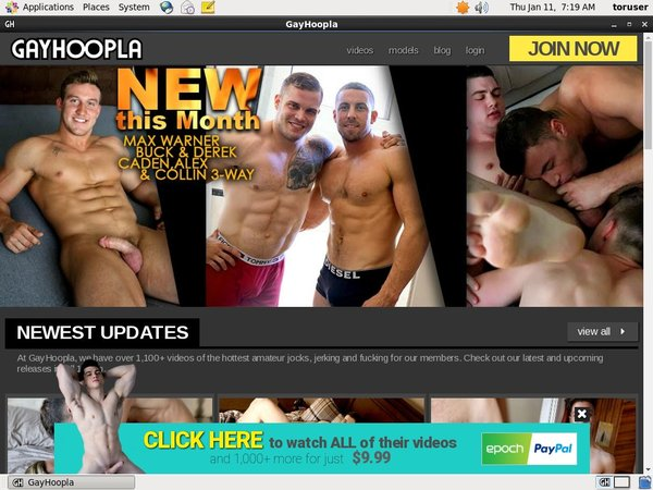 Free Gayhoopla Accounts Premium